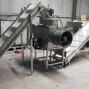 Garlic Processing Line